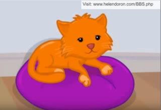 sunny_the_cat1