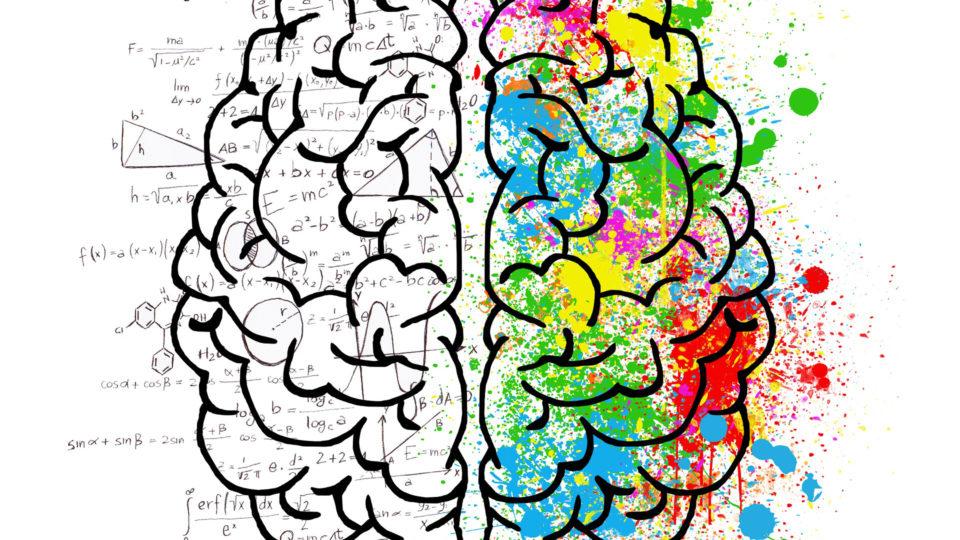 brain-2062057_1920-960x540.jpg